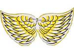 I216: Cockatoo Bird Wings
